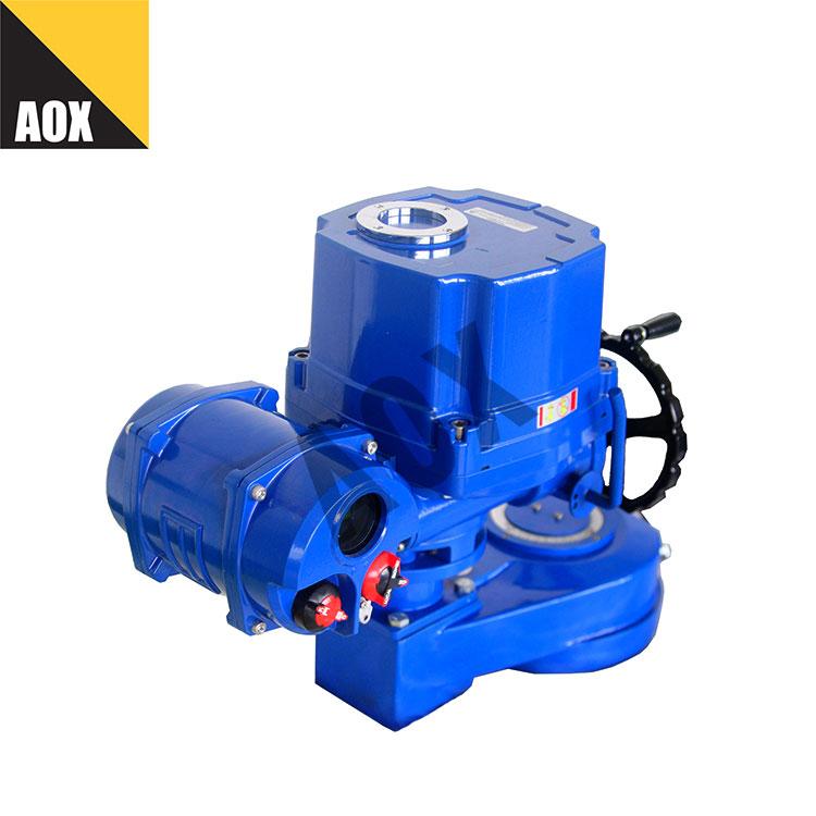 Local control motorized quarter turn actuator