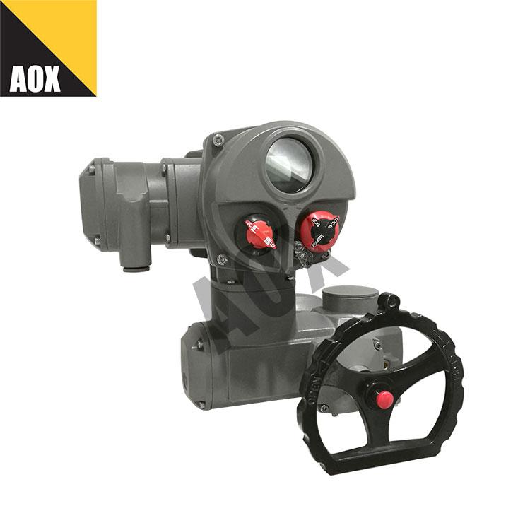Local control motorized multi turn actuator